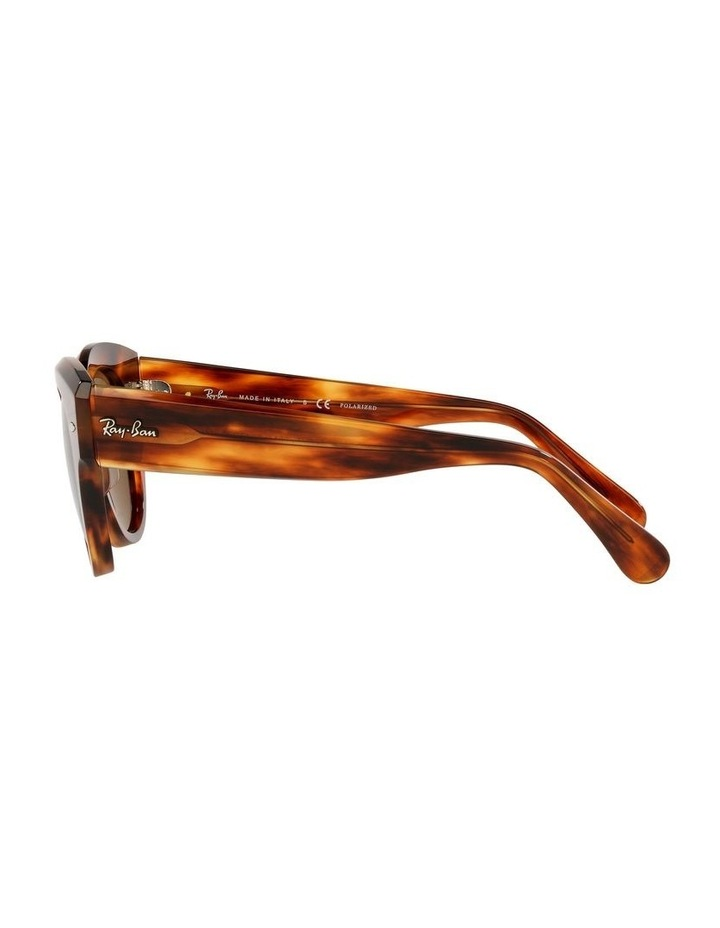 0RB2192 Roundabout 1535281005 Polarised Sunglasses image 4