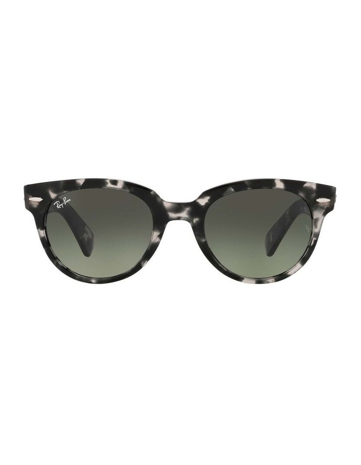 0RB2199 Orion 1535818002 Sunglasses image 2
