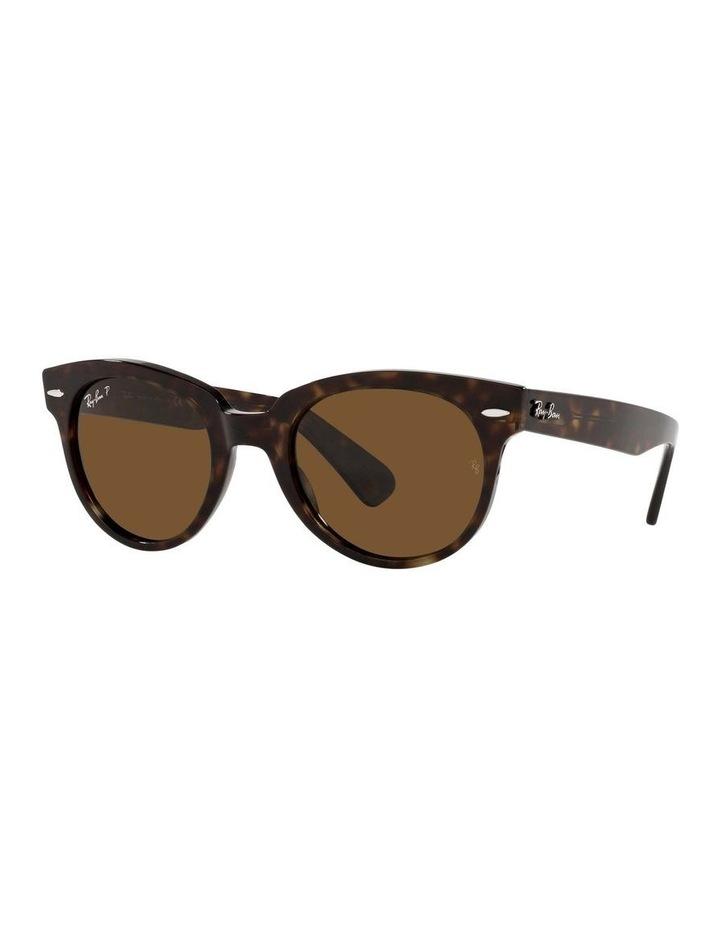 0RB2199 Orion 1535818005 Polarised Sunglasses image 1