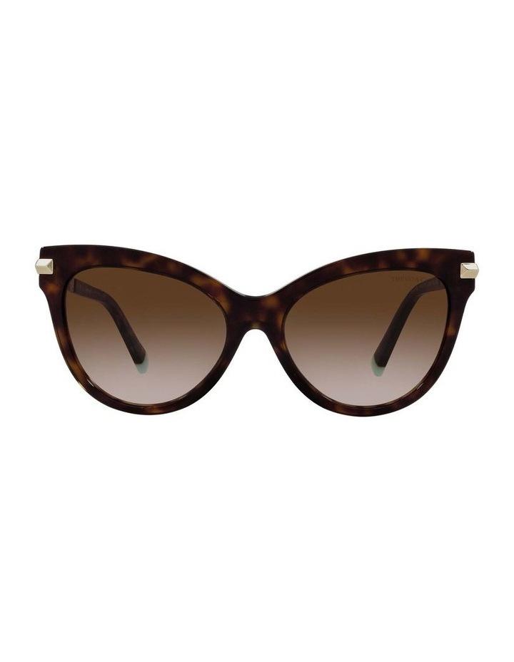 Tortoise Cat Eye Sunglasses 0TF4182 1535613004 image 2
