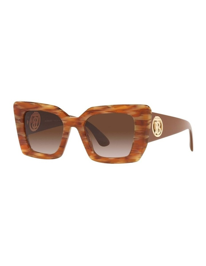 BE4344 Spotted Brown Sunglasses image 1