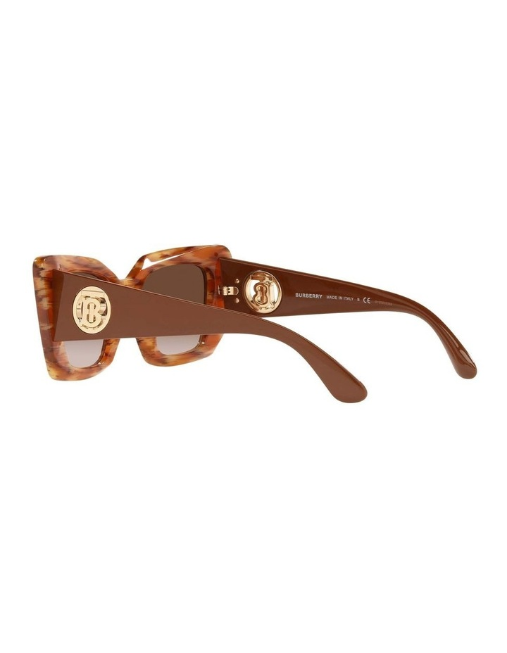 BE4344 Spotted Brown Sunglasses image 5