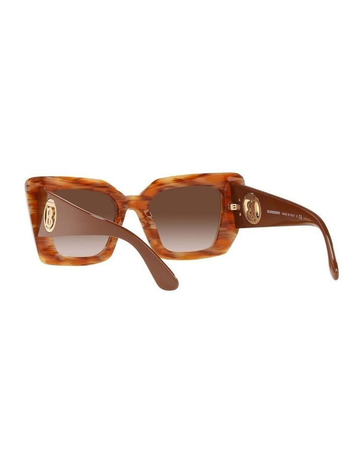 BE4344 Spotted Brown Sunglasses image 6