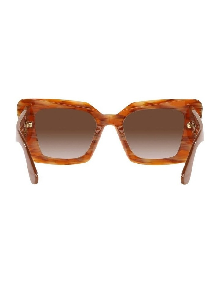 BE4344 Spotted Brown Sunglasses image 7