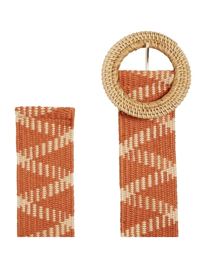 Two Tone Elastic Belt image 3