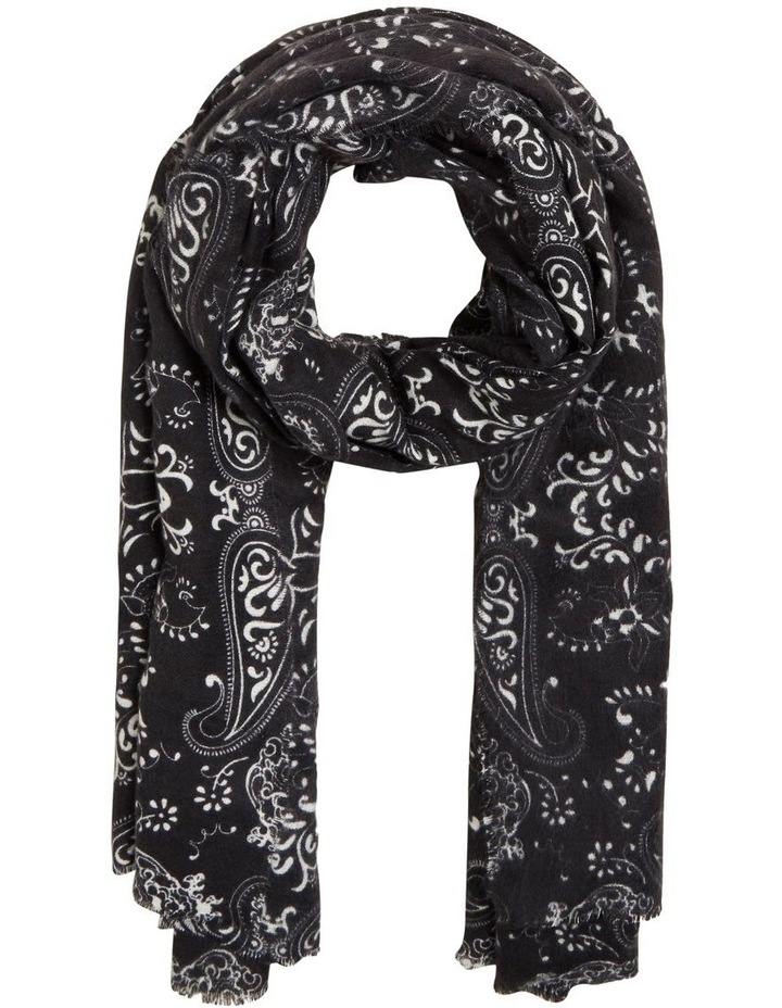 Simple Paisley Scarf image 1