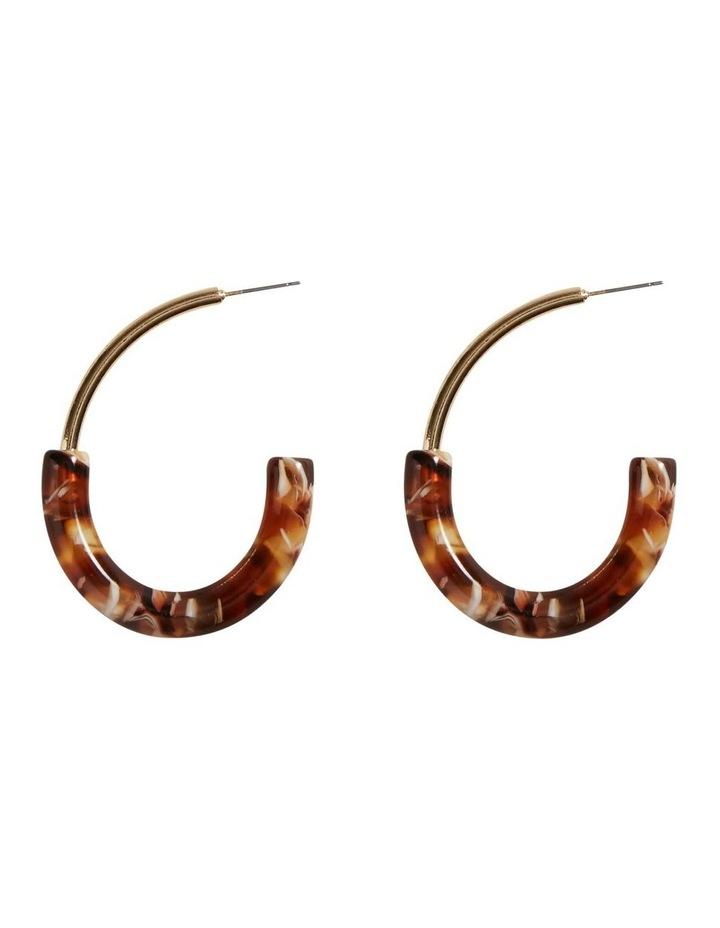 Semi Gold Earrings image 1