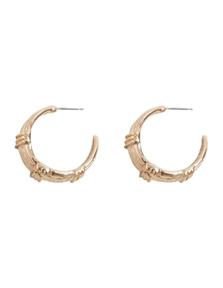 Detail Earrings image 1