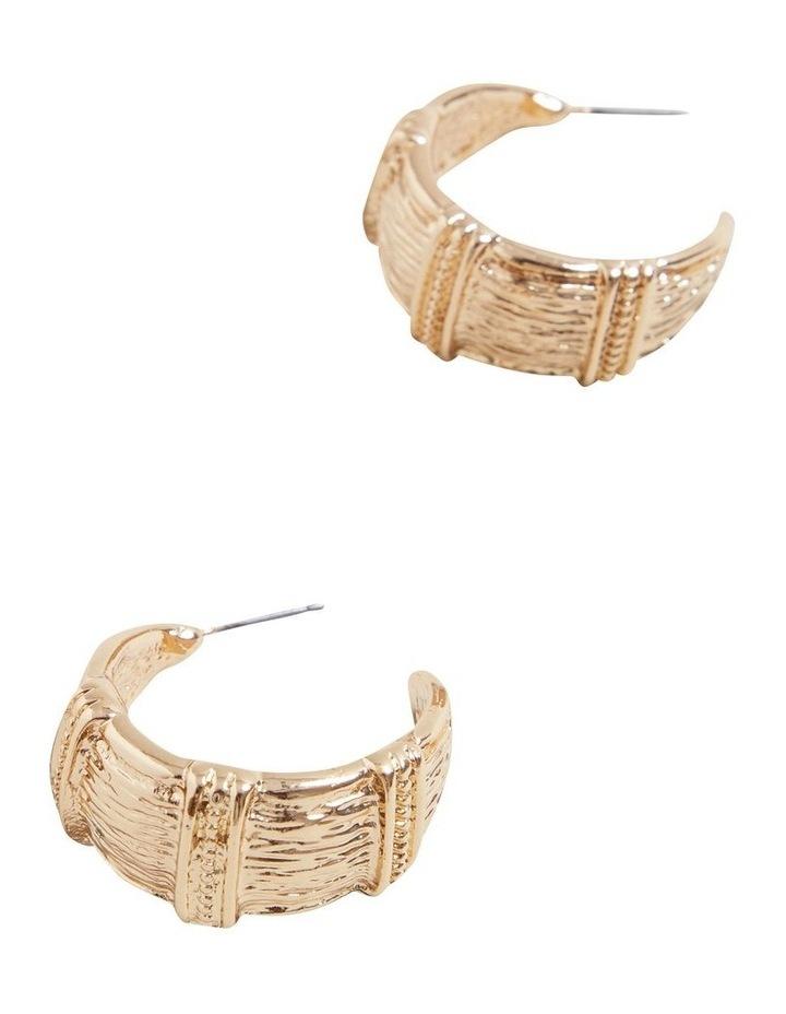 Detail Earrings image 3