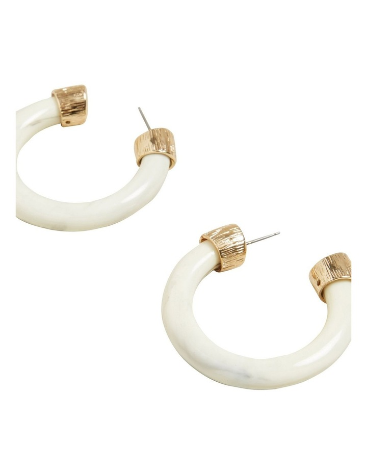 Resin Hoops image 3