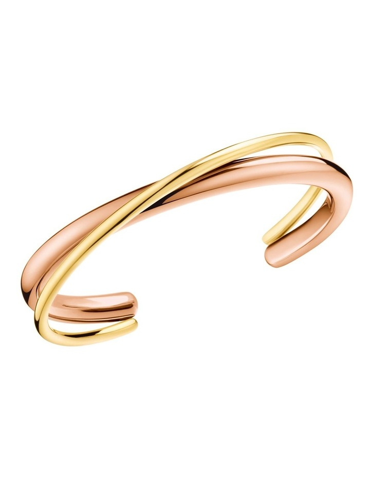 Double Bangle image 1