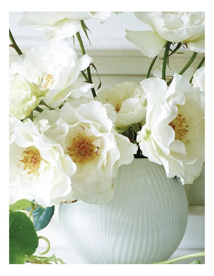 White Folia Rose Bowl 13cm image 2