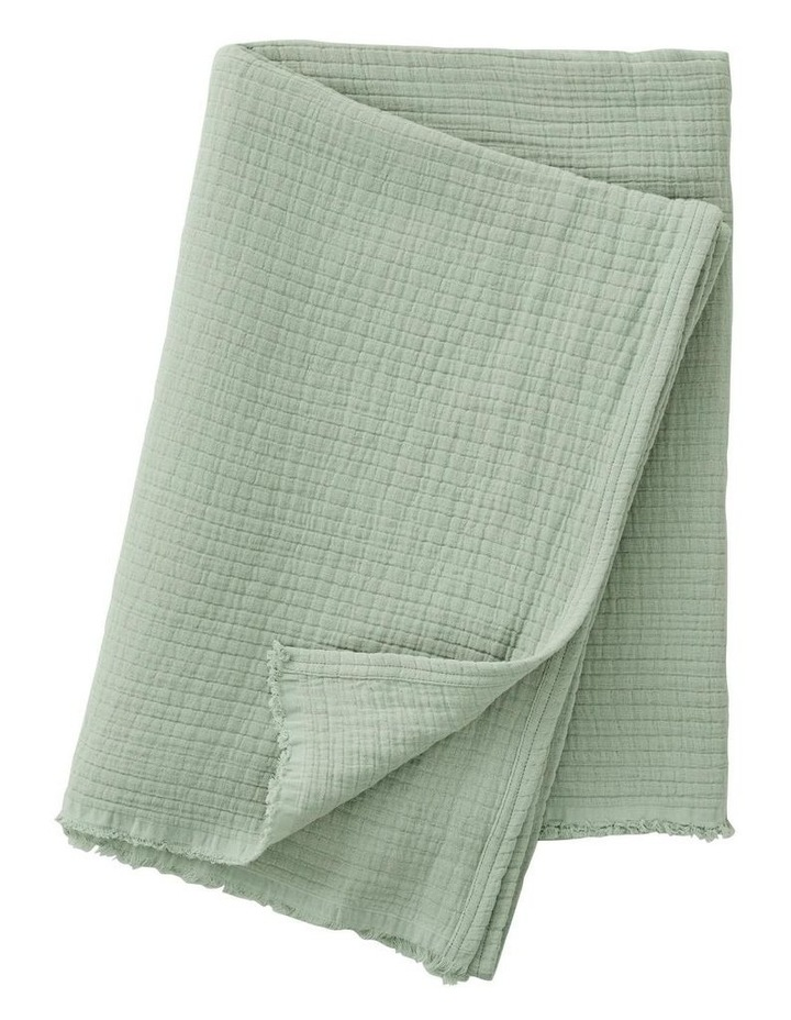 Naville Throw in Spearmint image 1