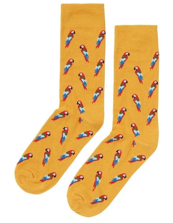 Parrot 1 Pk Socks image 3