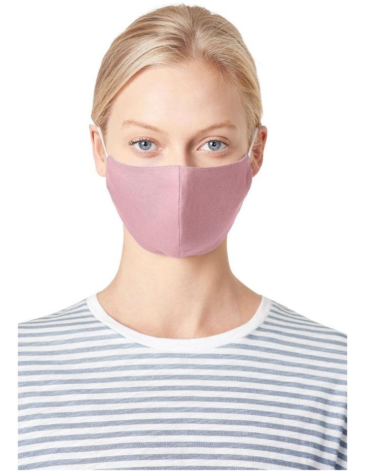 Face Mask 1 Pk image 1