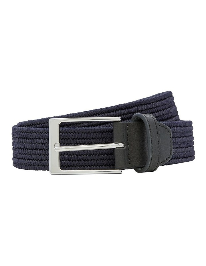 Pesci Polyester Belt image 1
