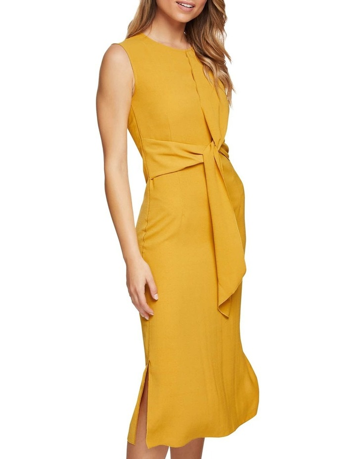 Kiki Drape Dress image 4
