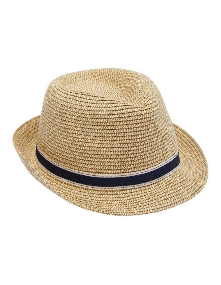 Cyrus Straw Hat image 1