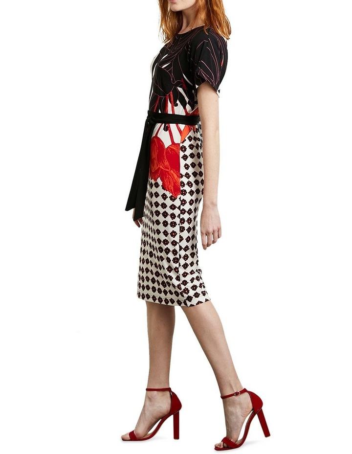 Livinia Dress image 2