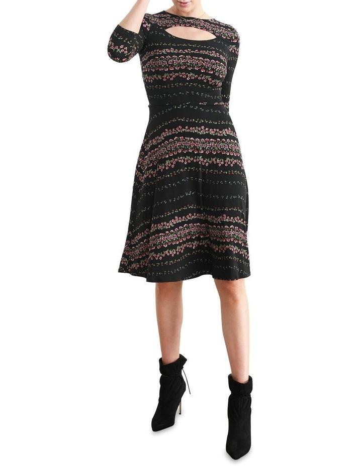 Delfina Fit & Flare Dress image 1