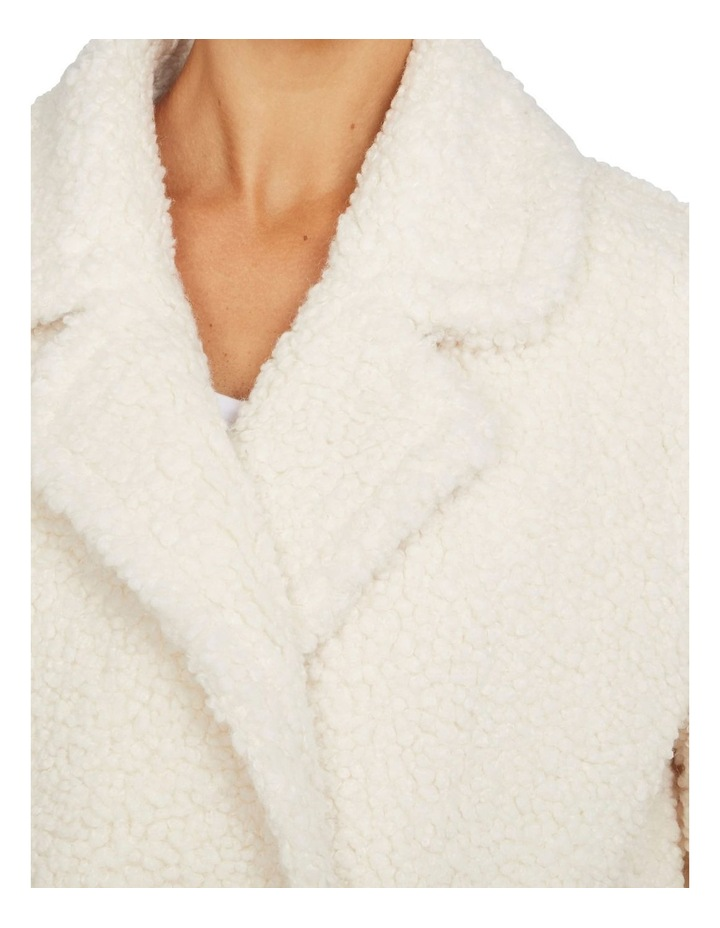 Faux Shearling Coat image 4
