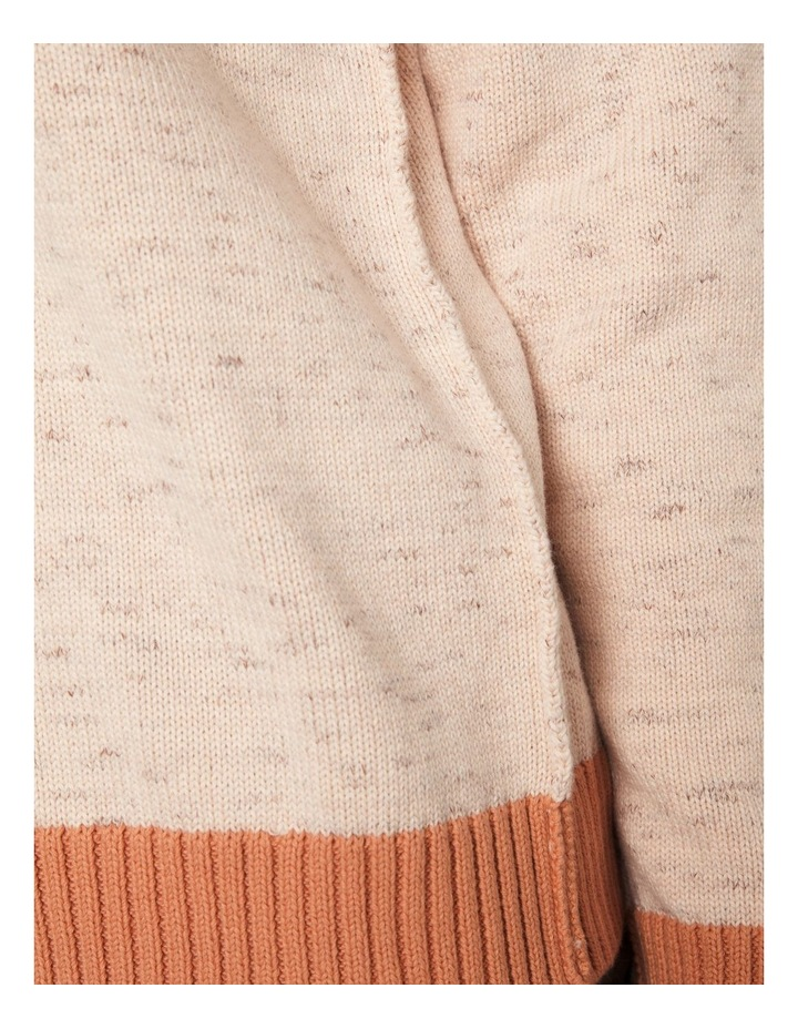 Long Sleeve Cotton Chunky V Neck image 4