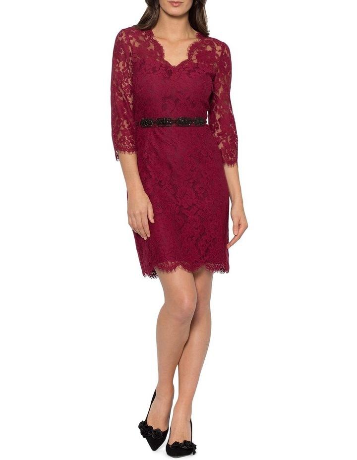 The Little Lace Dress image 1