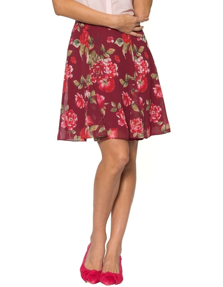 Lucky Charm Skirt image 1