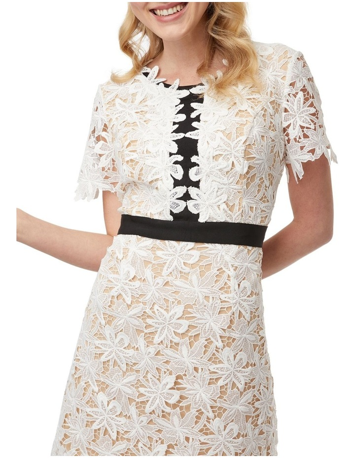 Late To Date Dress image 4