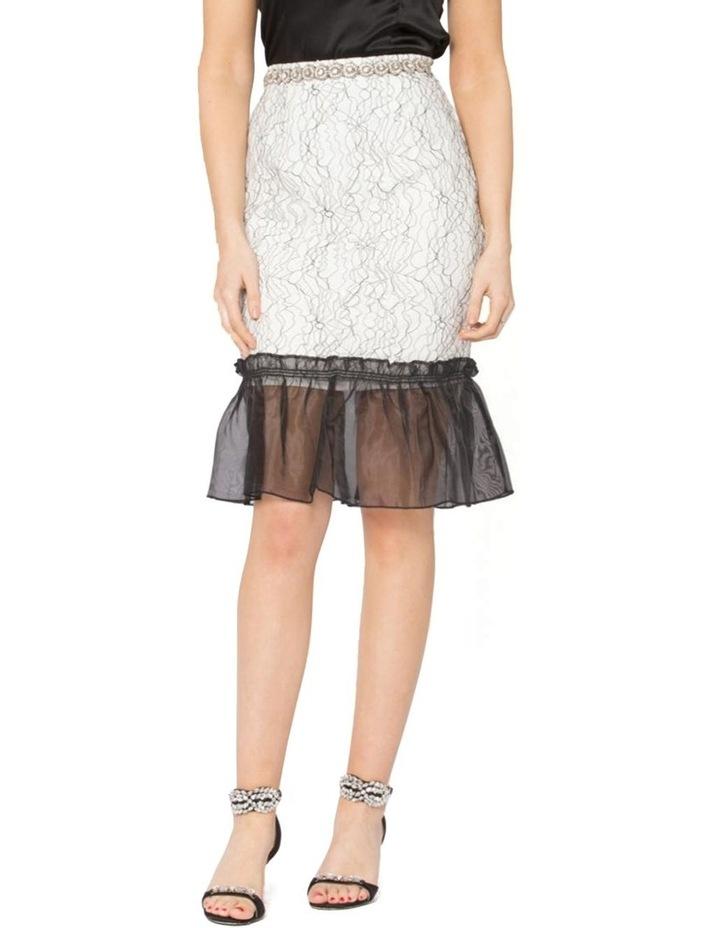 Her Heirloom Skirt image 1