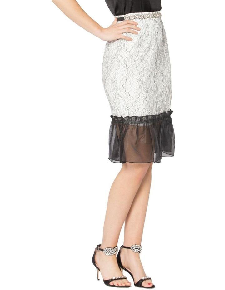 Her Heirloom Skirt image 2