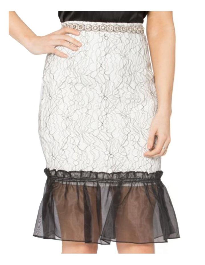 Her Heirloom Skirt image 4