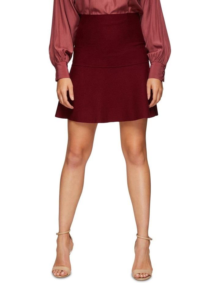 Dani Knitted Skirt image 1
