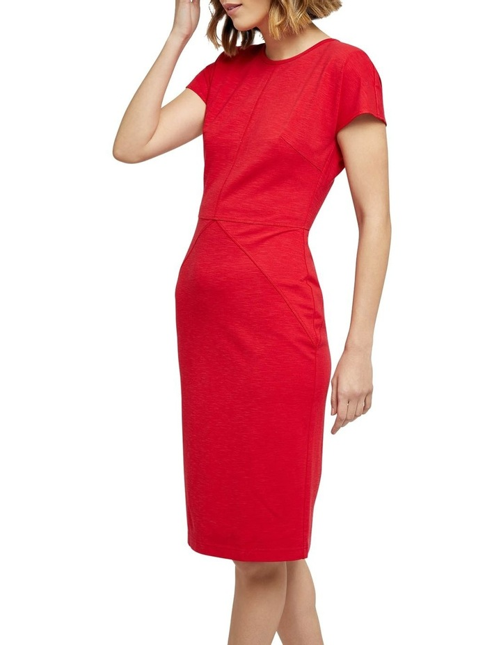 Magnolia Ponti Zip Dress image 2