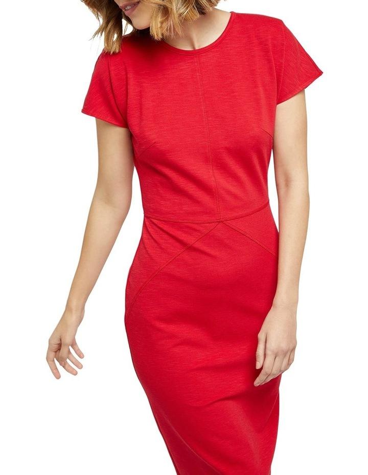 Magnolia Ponti Zip Dress image 4