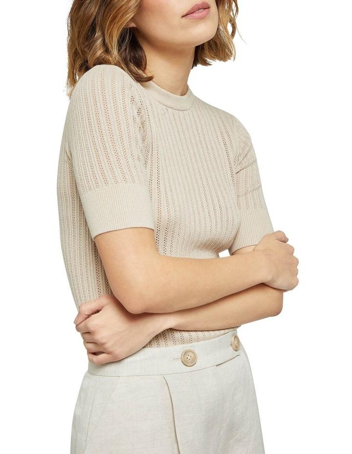 Rosie Pointelle Short Sleeve Knit image 4