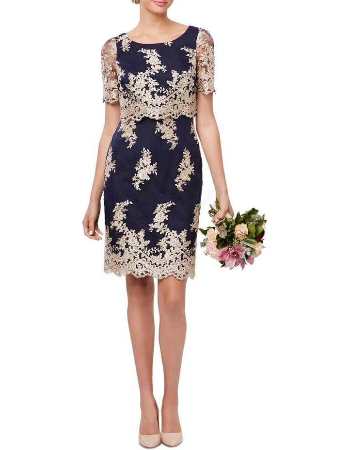 Heavenly Lace Dress image 1