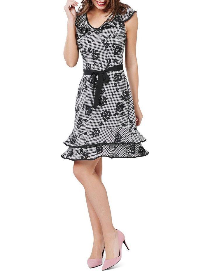 Lets Picnic Dress image 1