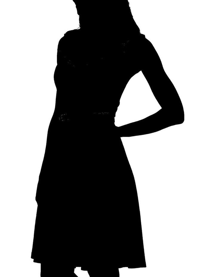 Serendipity Dress image 2