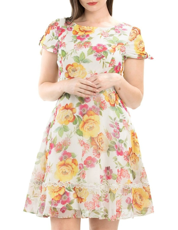 Secret Gardens Dress image 4