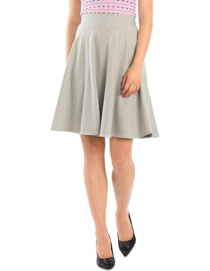 Ashy Skirt image 1