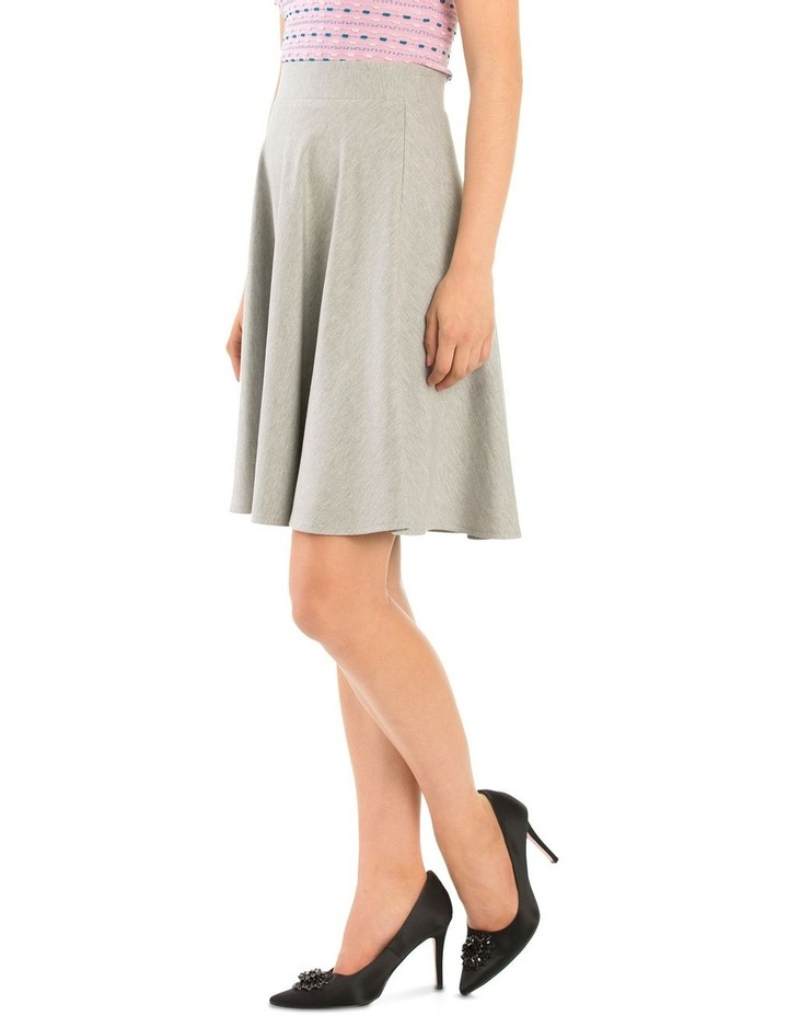 Ashy Skirt image 2