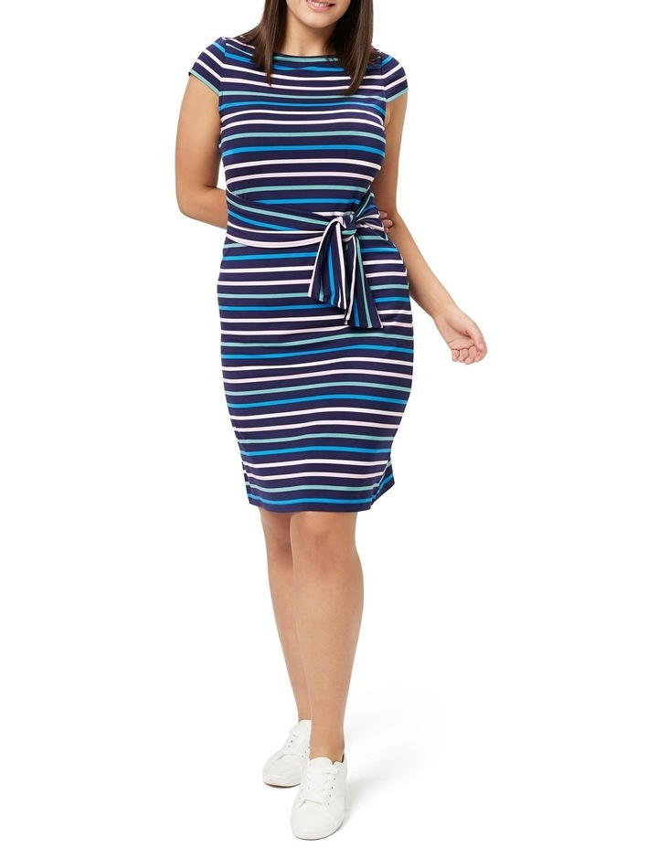 Amalfi Stripe Dress image 1