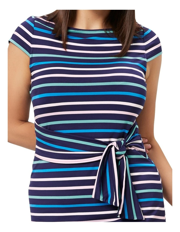 Amalfi Stripe Dress image 5