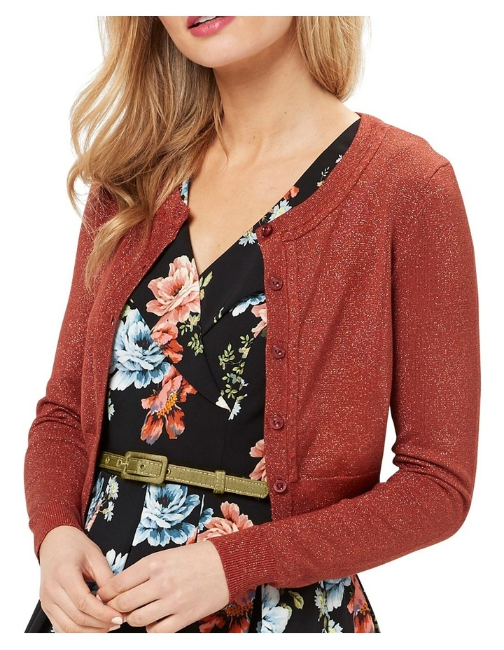Chessie Shimmer Long Sleeve Cardi image 3