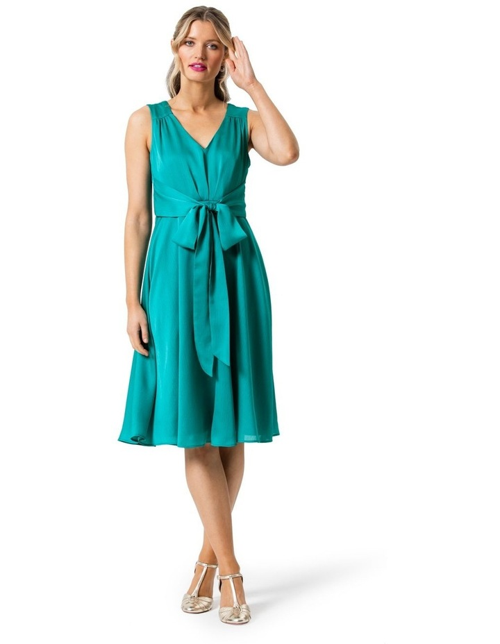 Peacock Dress image 3