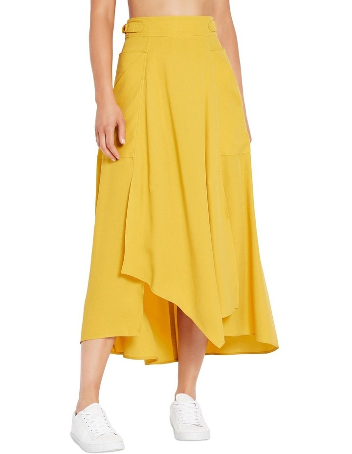 Picture This Skirt image 1