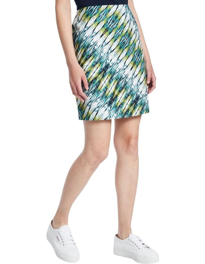 Ikat Print Skirt image 1