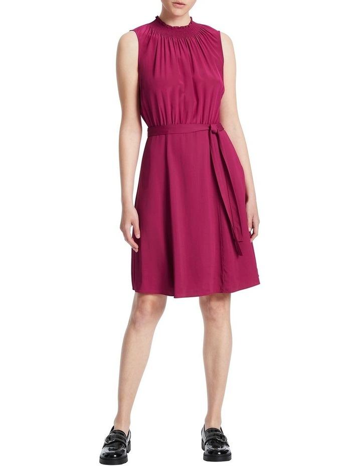 Raspberry Dress image 1