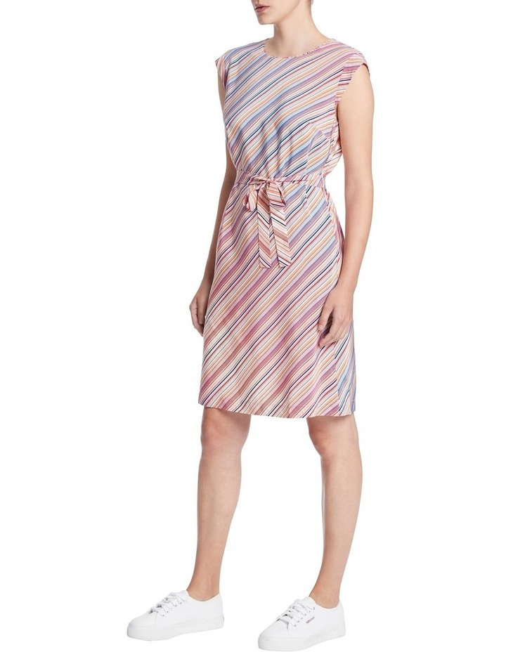 Retrostripe Silk Dress image 2